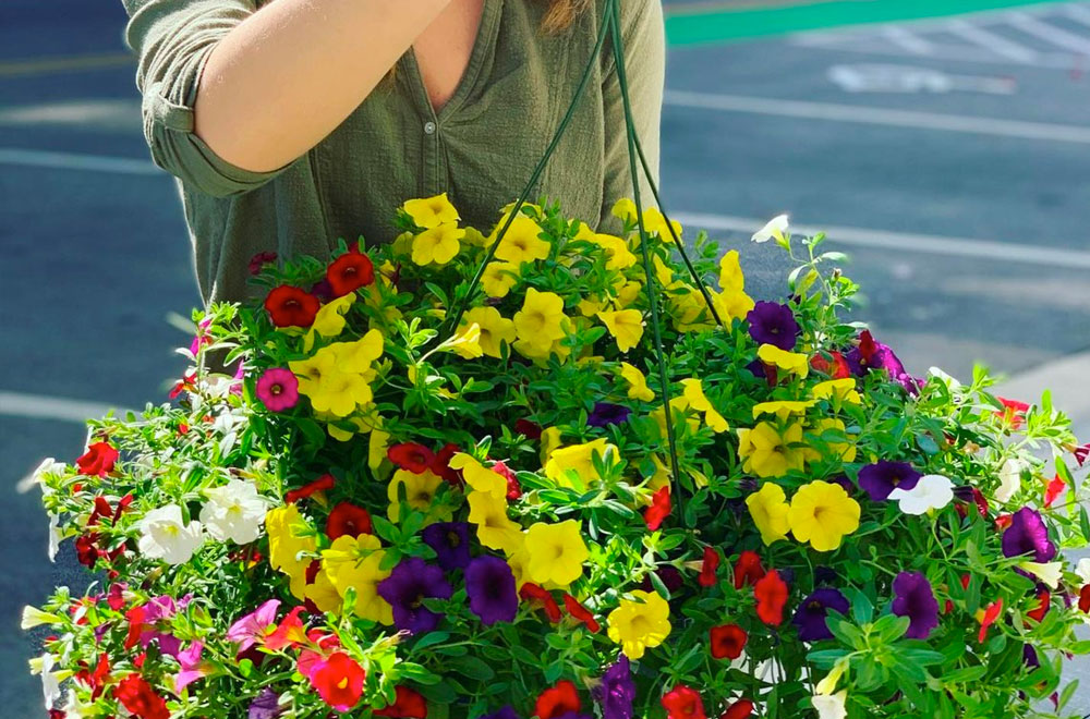 flowers from the flower lady